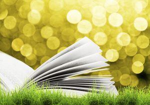 iStock image of open book.